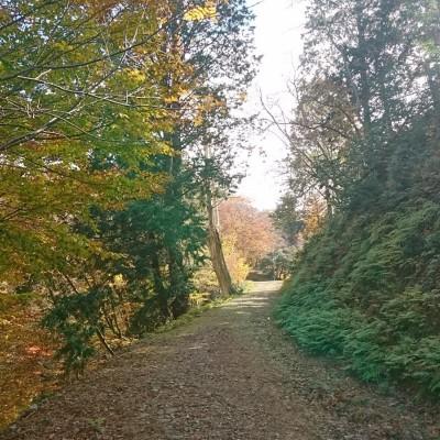 秋の空気を胸いっぱいに吸い込んで!