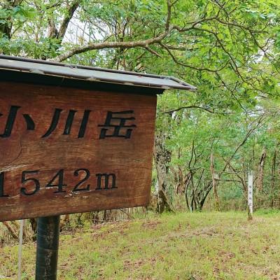 標高1542mの小川岳 同日開催の山都町選手とは小川岳から向坂山まで同じコースになります。