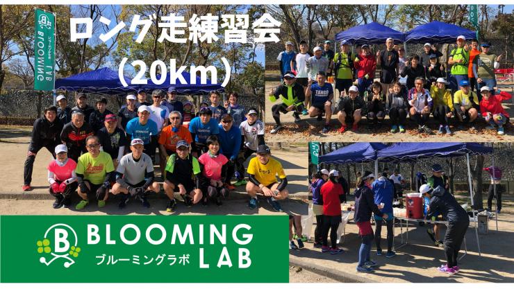 【ブルーミングラボ】サブ4・サブ5ペーサーあり!ロング走練習会<20km>