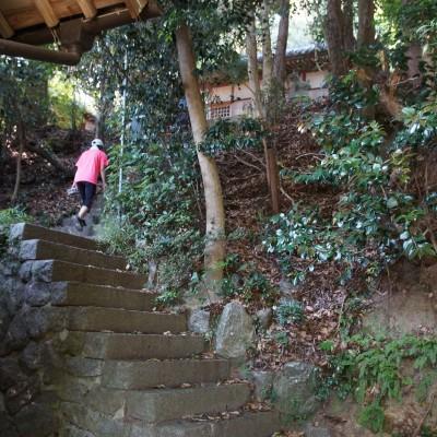 今年のコース:こんなレトロな階段も!