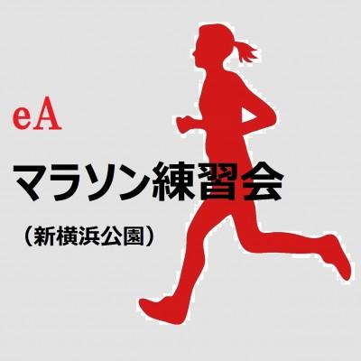★eAマラソン練習会(10月21日)ロング走・LSD<体験参加>