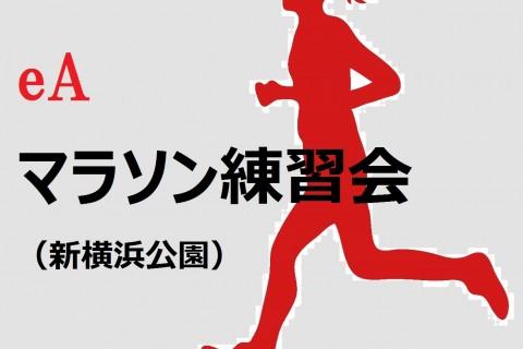 eAマラソン練習会(3月18日)ロング走・LSD<体験参加>