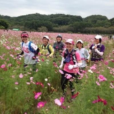 秘境コスモス畑と京都一周トレイルラン