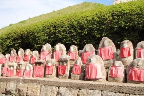 京都の街をぐるっと一周マラニック約27km 「太閤さんの築いた御土居(おどい)めぐりと時代祭」