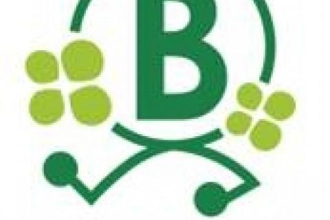 ランニングクラブブルーミング京都練習会【体験参加】