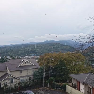 【かまくRUN】観光マラニック(小田原七...