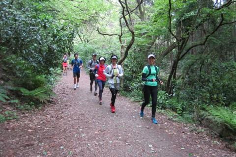 【参加費0円】逗子・葉山コース 16キロ