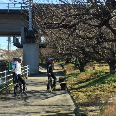 2/26(日)静岡自転車ぶらり旅・梅園めぐりで歴史探訪の旅