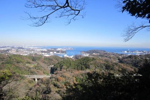 三浦半島Bコース 22キロ