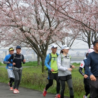 4/3(火)<平日ロング走企画>スカイツリー&荒川・隅田川お花見マラニック28km