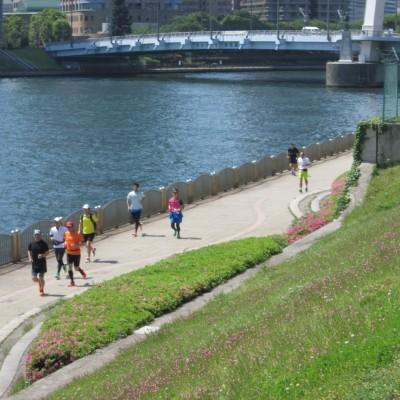 約10kmから2km区間は隅田川の親水プロムナードを走り、スカイツリー名所を案内します。