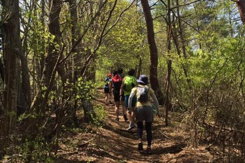 【RunField】トレイルランニングセッションin丹沢・ユーシン渓谷