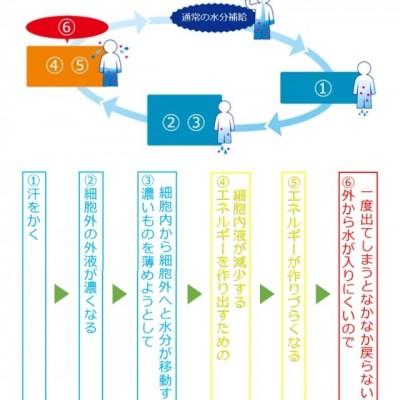 当セミナーでは、製品サンプルを活用したグリセリンローディング理論のレクチャーも実施いたします(初回参加特典)