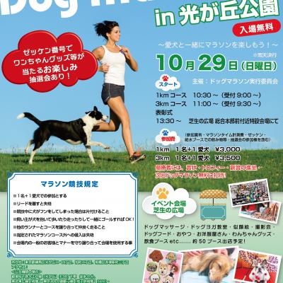 【コピー登録】第7回ドッグマラソンin光が丘公園