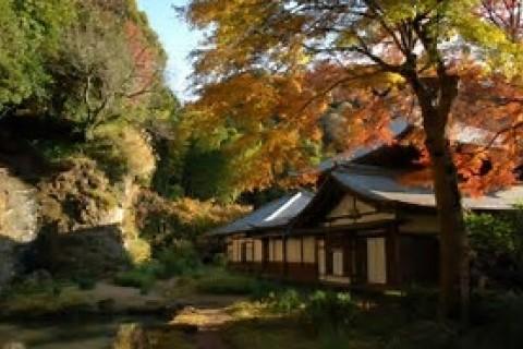 フォトラン 歴史感じる古都鎌倉 プラン