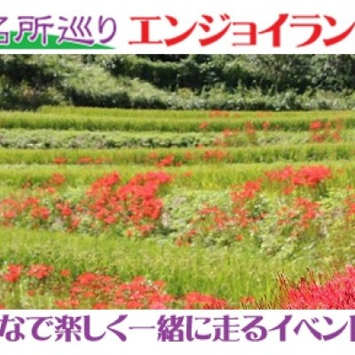 第13回観光ラン・奈良名所巡りエンジョイランニング~案山子ロードから稲渕の棚田と彼岸花
