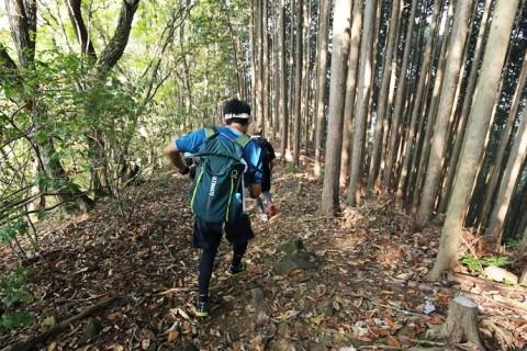 四季折々の自然を満喫しに御岳山へ!初級者向けトレイルランニングツアー(東京都)
