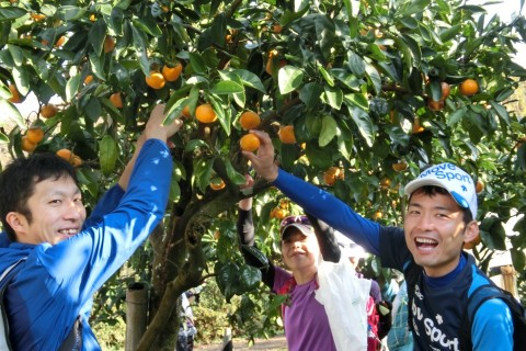 12月3日(日)秦野の里山 紅葉・温泉・みかん狩りを楽しむマラニック22km