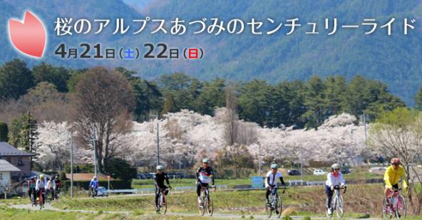 桜のアルプスあづみのセンチュリーライド2018【桜のAACR】
