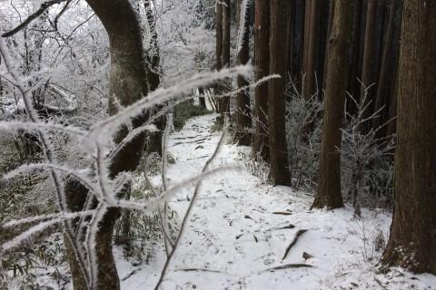 【非日常】冬山トレイルラン~ショートトレイル&スロートリップ~