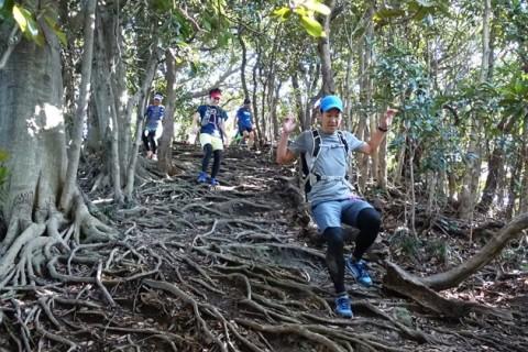 「三浦アルプス」をぐるっと周回!/中級者向けトレイルランニングツアー(神奈川県)