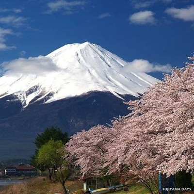 第2回富士山トレイルラン2018