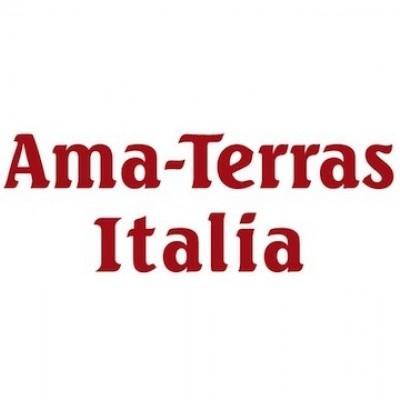 株式会社アマテラス・イタリア