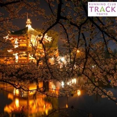 夜桜RUN@上野公園