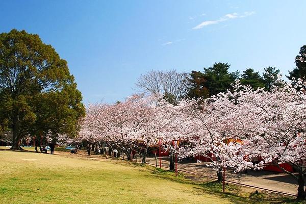 古墳群を走る!日岡山公園の周回コース(加古川市)
