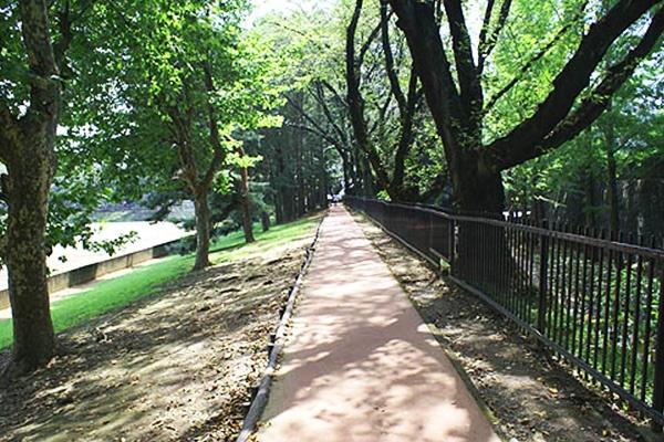 栃木 県 総合 運動 公園