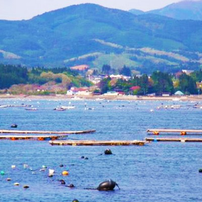 「緑の真珠」と呼ばれる島。気仙沼大島コース(気仙沼市)