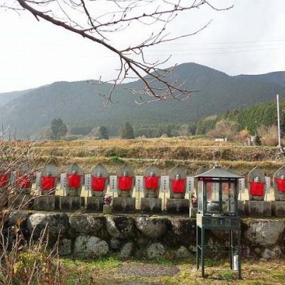 ≪ランde観光≫花の寺シリーズ1 [奈良]遥かなる歴史とロマン!葛城の里周遊【中級/上(中)級】