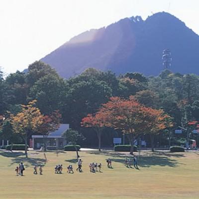 キャンプ場周辺を走る「希望が丘文化公園」コース(野洲市)