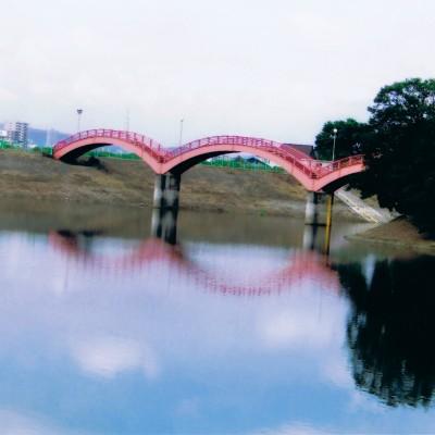 四季の花々を愛で緑陰を走る。春日池公園コース(福山市)