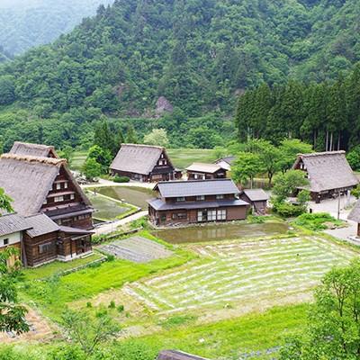 涼しく夏ラン!大自然を走れる八乙女山コース(南砺市)