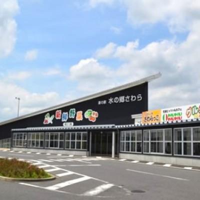 利根川サイクリングロードコース(香取市)