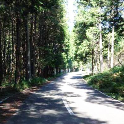 タフな坂に挑む! 国内最高峰の自転車レースコース(宇都宮市)