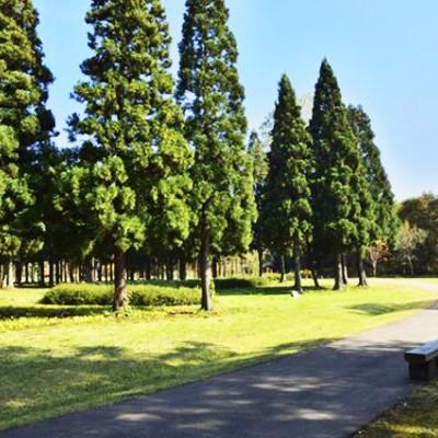 景色抜群!北欧の杜公園~大館能代空港コース(北秋田市)