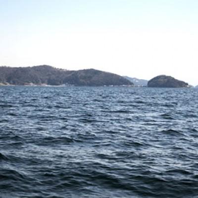 近江八幡公園から走る湖岸往復コース(近江八幡市)