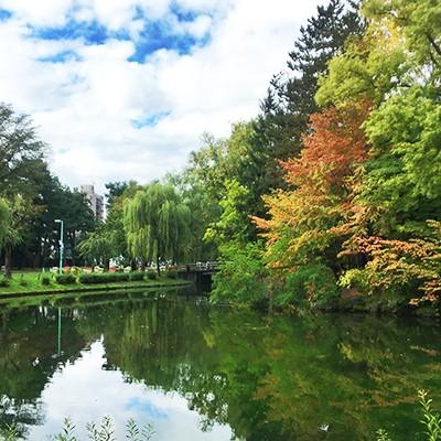 100余年の歴史ある常盤公園周回コース(旭川市)