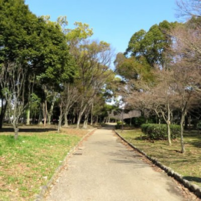 関西ランナーの聖地。長居公園周回コース(大阪市)