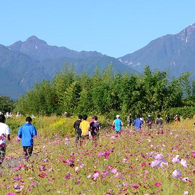 鈴鹿山麓かもしかハーフマラソンコース(菰野町)