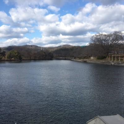 水と桜の美しさ!「酒津(さかづ)公園」コース(倉敷市)