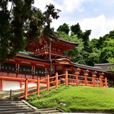 春日大社参道と若草山コース(奈良市)