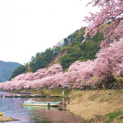 琵琶湖八景のひとつ、海津大崎コース(長浜市)