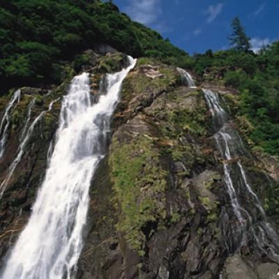 屋久島世界自然遺産コース(熊毛郡)