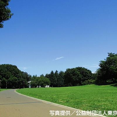 緑陰を走る!光が丘公園ランニングコース(練馬区)