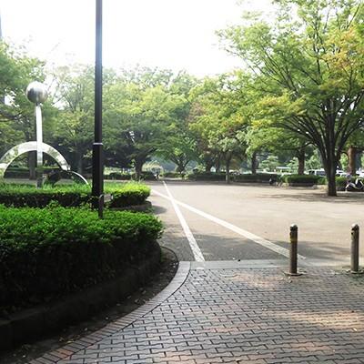 最適ペースで練習!平塚市総合公園周回コース(平塚市)