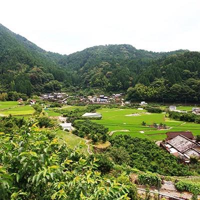 柚子の里・馬路村の山道満喫コース(馬路村)