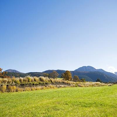 九重連山を仰ぐ風の丘コース(九重町)